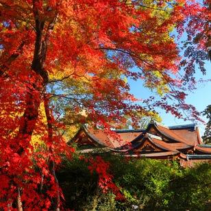 Kitano Tenman-gu Shrine