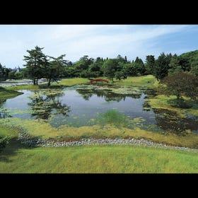 명승지 구 다이조인 정원