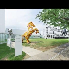 十和田酒店市现代美术馆