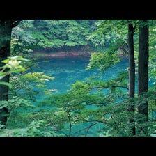 Seven Swamps of Tsuta