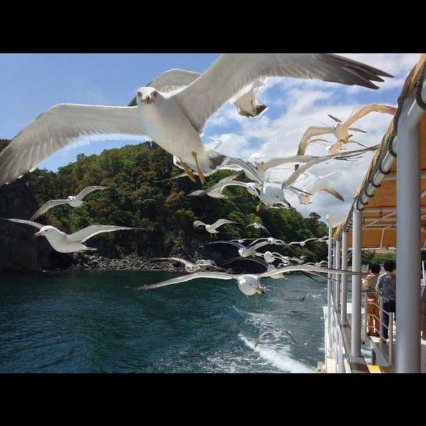 Miyako淨土濱遊覽船