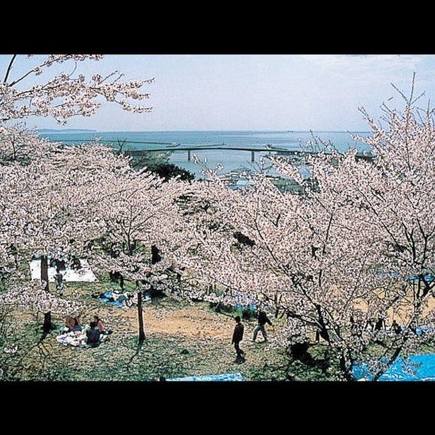 히요리야마 공원