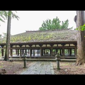 """新宫熊野神社""""长床"""""""