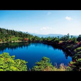 八幡平山頂散步道