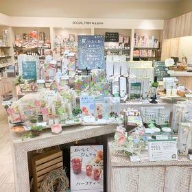 生活の木 ルクア大阪店