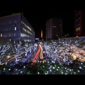六本木HILLS Artelligent Christmas