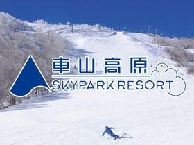 车山高原SKYPARK滑雪场