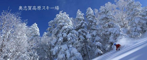 奧志賀高原滑雪場