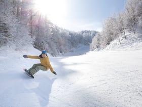 YABUHARA高原滑雪場