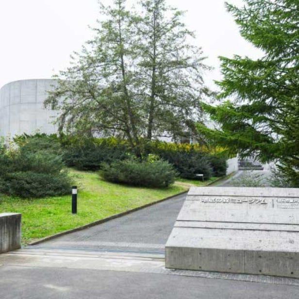 지저의 숲 뮤지엄(센다이시 도미자와 유적 보존관)