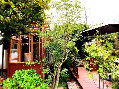 Tea house 右樹 の画像