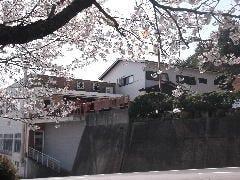 料理民宿 浜福