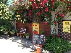 cafe  とまとの店 の画像