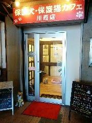 保護犬保護猫カフェ 川西店