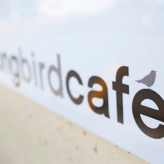 Song bird cafe