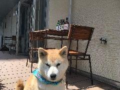 Dining cafe あん子の庭