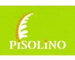 ピソリーノ 明野店の画像