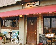 イタリア料理 ペコリーノ