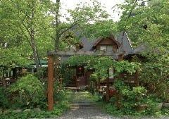TREE HOUSE の画像