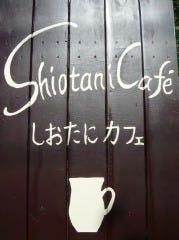 しおたにカフェ