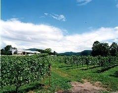 丹波ワインハウス