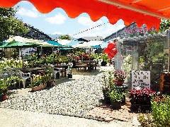 土方洋蘭イチゴ園カフェ