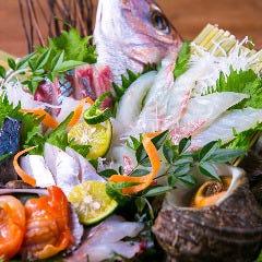 地魚食堂 鯛之鯛 烏丸店