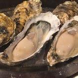 国内を中心にプレミアムな牡蠣をご用意。