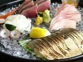 豊洲直送鮮魚盛り合わせ