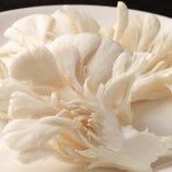 【薬膳鍋単品】白舞茸