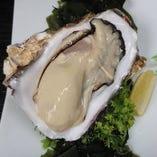 【特大】生牡蠣