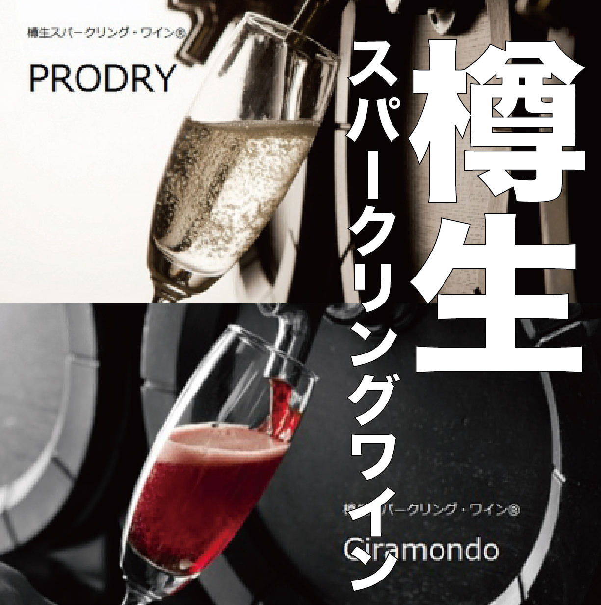 飲放題は人気のイタリア産樽生のスパークリングワインOK!