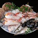 長浜市場から直送の鮮魚