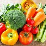 契約農家の新鮮野菜【国内】