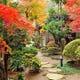 季節ごとに表情を変える花木に囲まれた石畳を通って・・・