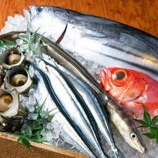 【漁港直結】絶品の新鮮魚介を味わう