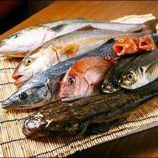 鳥取境港より朝獲れたばかりの鮮魚