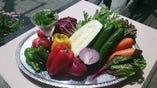 契約農家さんから届く 新鮮野菜たち【兵庫県 福知山市】