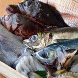 新鮮な旬魚【日本各地より厳選】