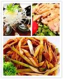 ネギチャーシュー/ピータン/蒸し鶏の胡麻ソースかけ