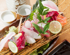 季節を味わえる魚介類を盛り合わせで