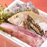 市場直送の新鮮な鮮魚
