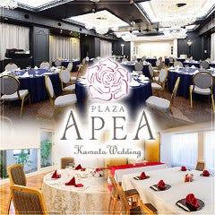 ホテル プラザ・アペア 宴会場