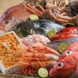 これからが旬の絶品の鮮魚をどうぞ
