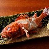 直送鮮魚の塩焼きは黒板メニューよりお選びください