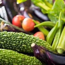 地元の新鮮野菜!