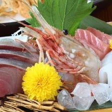 毎日仕入!朝獲れの鮮魚をご提供