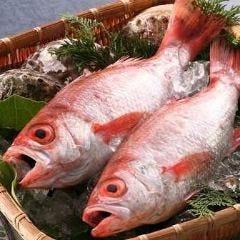酒と魚の店 魚はる