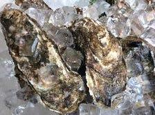 生牡蠣祭常時開催