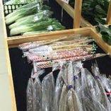 地産地消!兵庫県産の新鮮お野菜【兵庫県】
